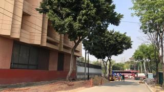 La secretaría de obras y servicios prioriza incorporación de áreas verdes en la rehabilitación del centro histórico